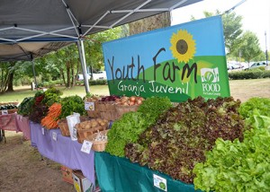 youth farm sign behind a large amount of fresh produce