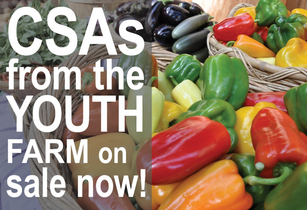 csa on sale now FEATURED EVENT IMAGE