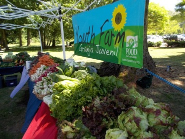 Youth Farm Stand Open at RiverBend - FOOD For Lane County