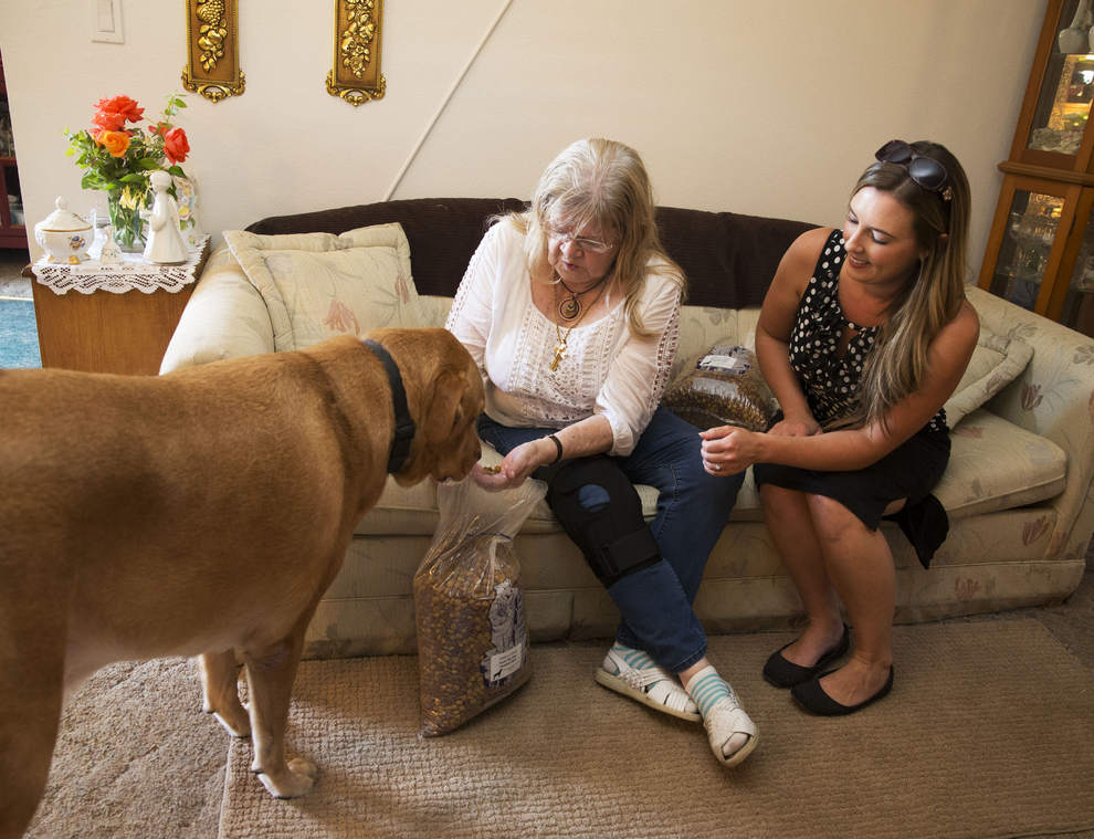 a large dog sniffs a bag of dog food. an older and a younger woman sit on a couch near the dog.
