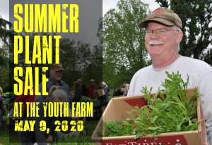 an older man with glasses and a hat holds a box of plants summer plant sale at youth farm may 9