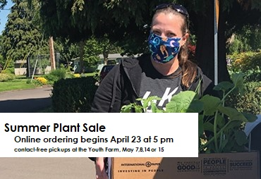 person with a pony tail and mask holds a box of plant starts summer plant sale ordering begins friday april 23