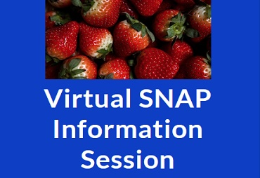 virtual snap information session